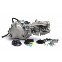 Двигатель Daytona Anima 2.0 150cc (4 клапана)