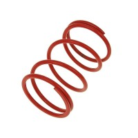 Пружина ведомого шкива Malossi [красная] - Honda